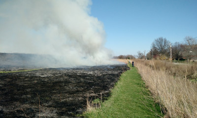 Back across the weir, I had a view of the already burned strip