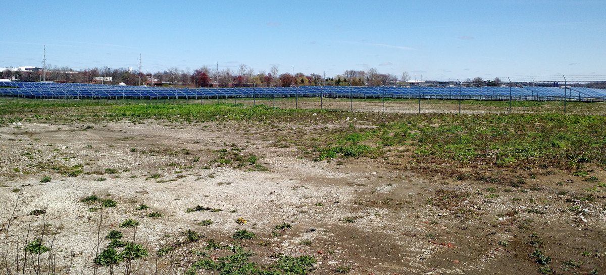 Walking past the UofI's solar farm