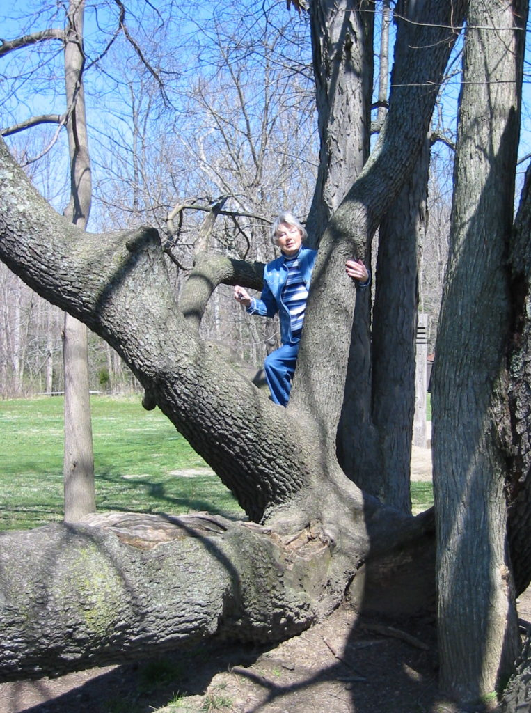 Picture of Barbara Land having climbed a tree